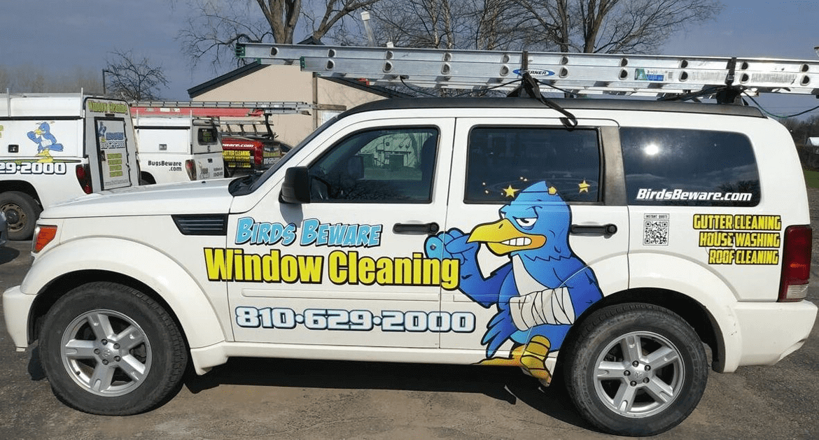 Bird Beware Window Cleaning Fenton | All-Clean!