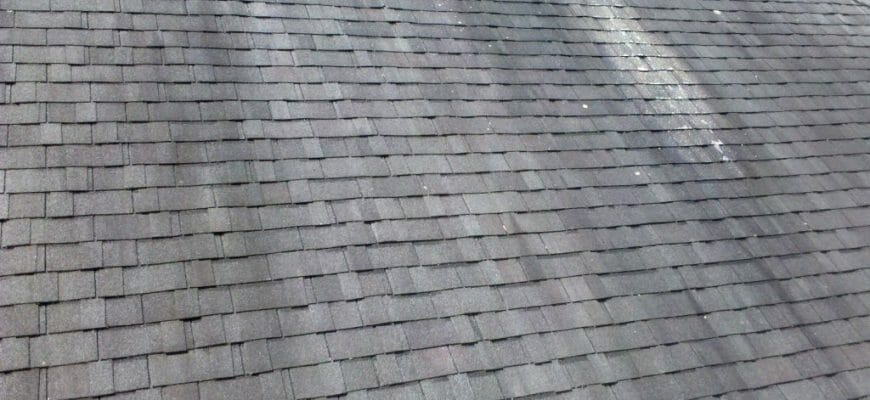 What Is The Business Case For Cleaning My Roof vs Doing Nothing?